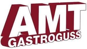 Купить Профессиональное оборудование AMT Gastroguss (Германия):