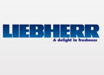 Купить Профессиональное оборудование Liebherr (Австрия):